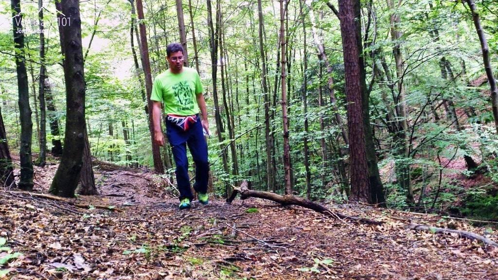 Im Wald gehen, für mich das Leben