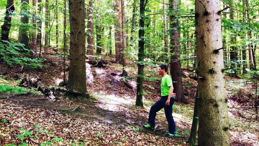 Gehen im Wald nach dem Hirnabszess