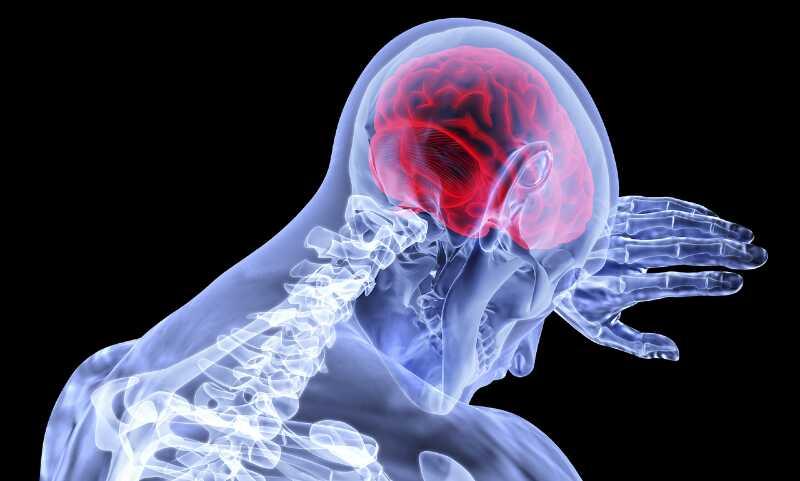 Alles geht vom Gehirn aus