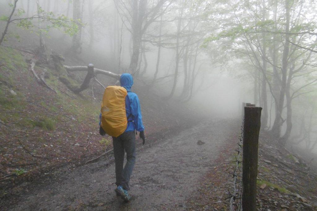 Unterwegs nach Roncesvalles