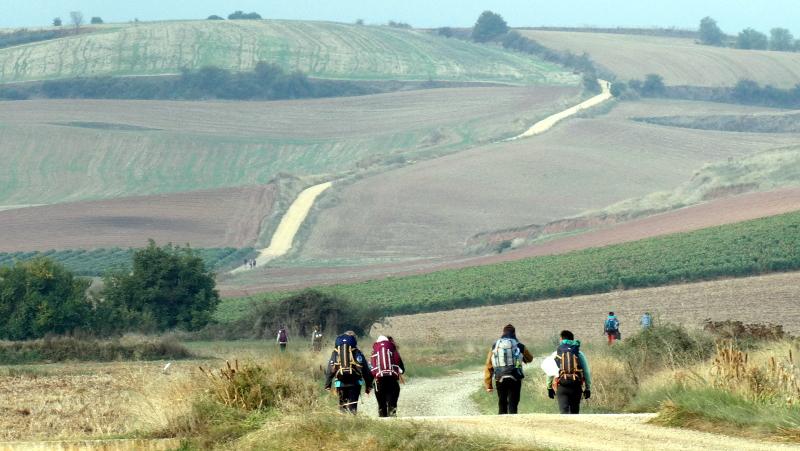 Pilgern am Jakobsweg