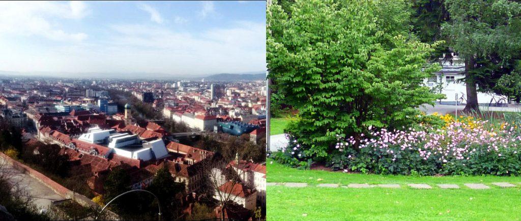 Stadt versus Grünraum