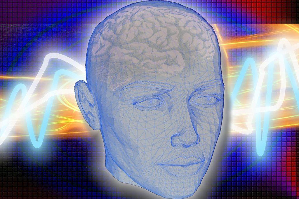 Grenze Gehirn
