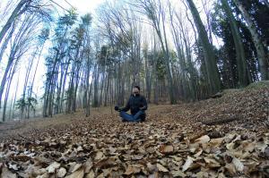 Ruhe im Wald