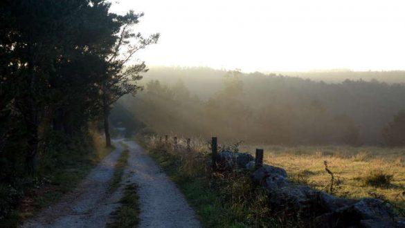 Camino de Norte