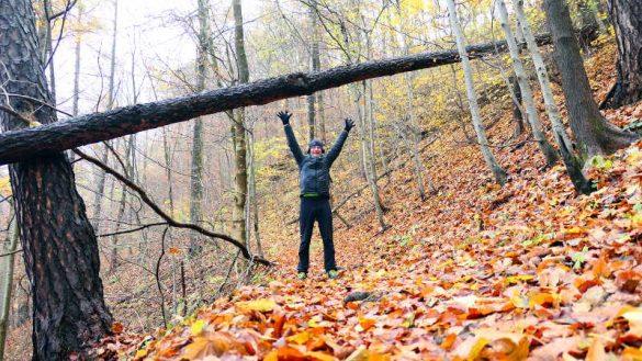 Bewegen im Wald
