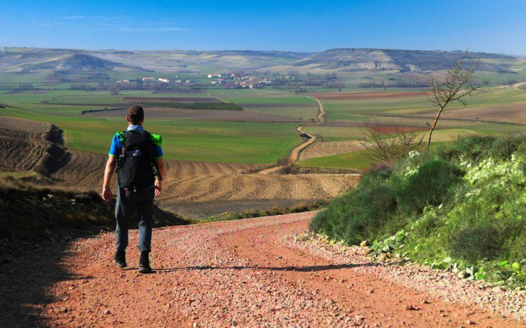 Camino Frances 2020