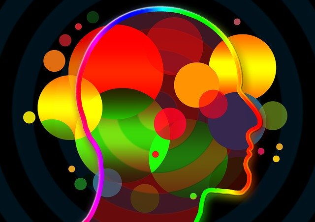 Gehirn und Bewegung
