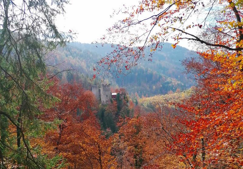 Burgruine Peggau im Herbst