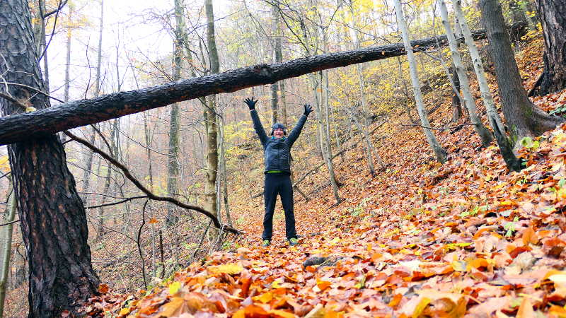 Rehabilitation im Wald
